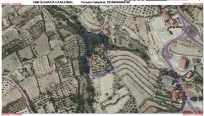 Finca Rustica en el Pardo de Zújar (Granada)