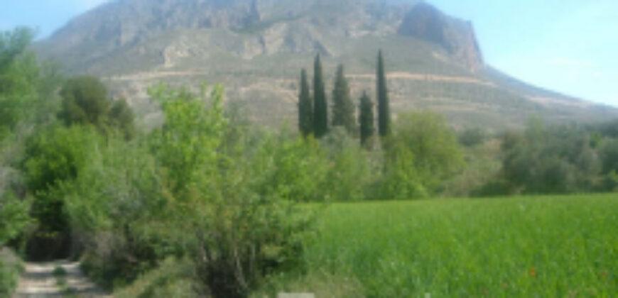 Molino las Viñas en Zujar